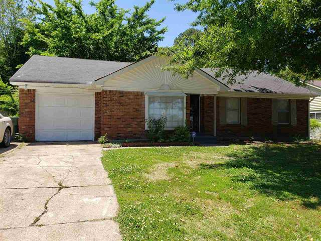 3797 Clearbrook St, Memphis, TN 38118 (#10107537) :: All Stars Realty