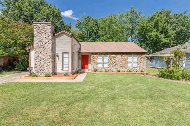 7026 Hillshire Dr, Memphis, TN 38133 (MLS #10107614) :: Area C. Mays | KAIZEN Realty