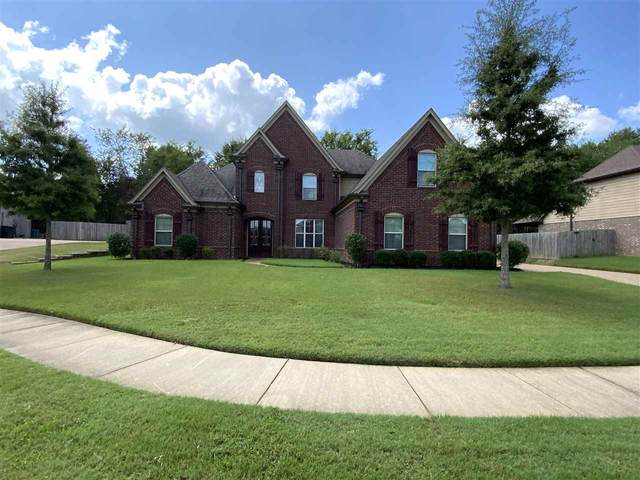 185 Amber Waves Ln, Collierville, TN 38017 (MLS #10107652) :: The Justin Lance Team of Keller Williams Realty
