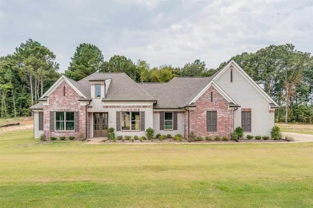 319 Fairview Trl NE, Byhalia, MS 38611 (MLS #10107736) :: Gowen Property Group | Keller Williams Realty
