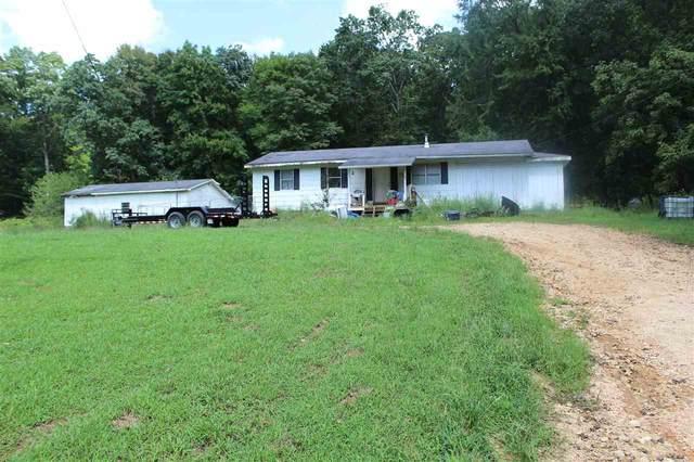 171 Meredith Hollow Rd, Waynesboro, TN 38485 (#10107895) :: The Melissa Thompson Team