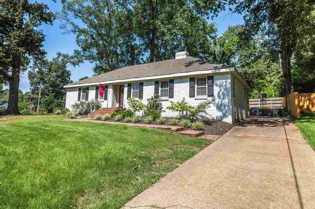 5336 Knollwood Dr, Memphis, TN 38119 (#10108068) :: The Wallace Group at Keller Williams