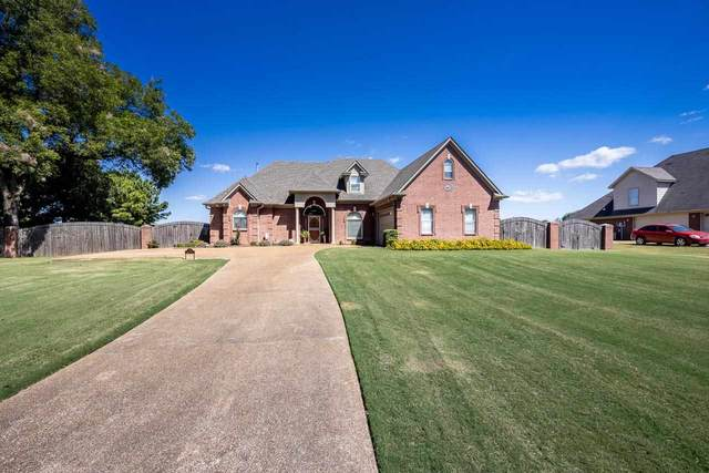 7650 Stateline Rd, Olive Branch, MS 38654 (#10108497) :: Bryan Realty Group