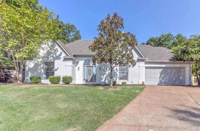 293 Spruce Glen Cv, Memphis, TN 38018 (#10108642) :: Area C. Mays   KAIZEN Realty
