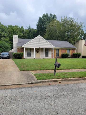 6474 Wildwind Dr, Memphis, TN 38115 (#10108729) :: RE/MAX Real Estate Experts