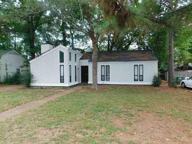 6094 Mingle Dr, Memphis, TN 38115 (#10108903) :: J Hunter Realty