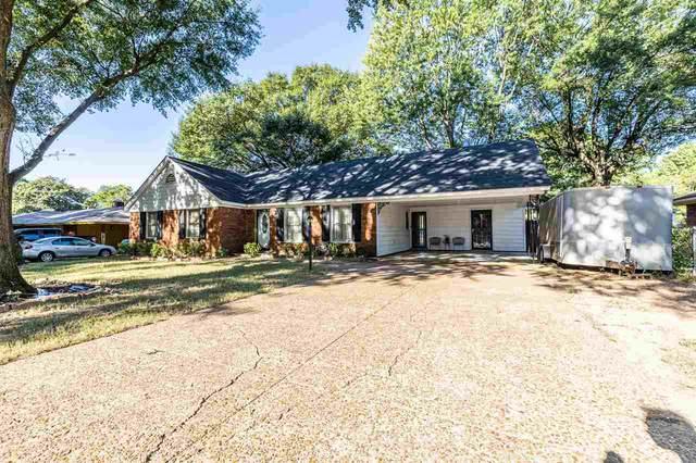 3771 Graceland Dr, Memphis, TN 38116 (MLS #10108907) :: Your New Home Key