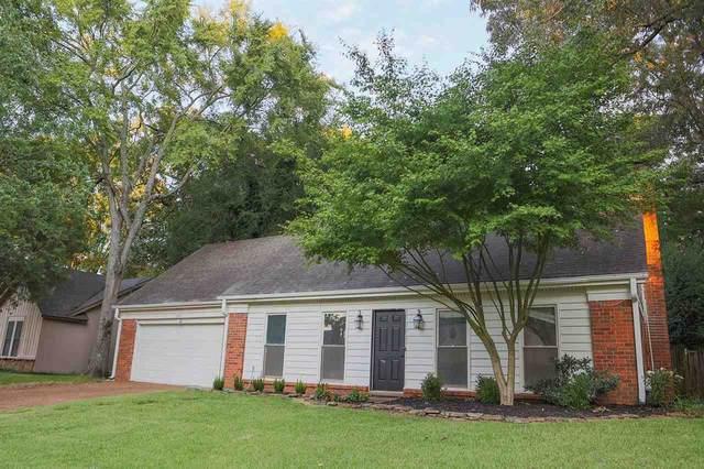 1432 Treehaven Cv, Memphis, TN 38016 (#10108917) :: RE/MAX Real Estate Experts