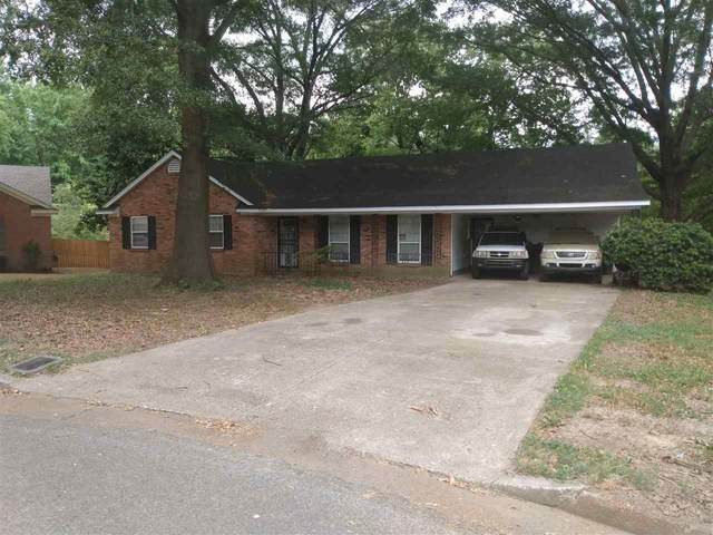 4355 Manorhaven Dr, Memphis, TN 38128 (MLS #10108920) :: Area C. Mays | KAIZEN Realty