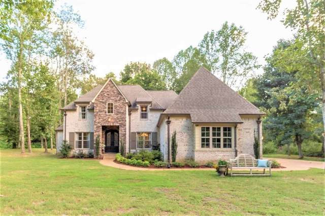 11037 Silsbe Ln, Eads, TN 38028 (#10108948) :: RE/MAX Real Estate Experts