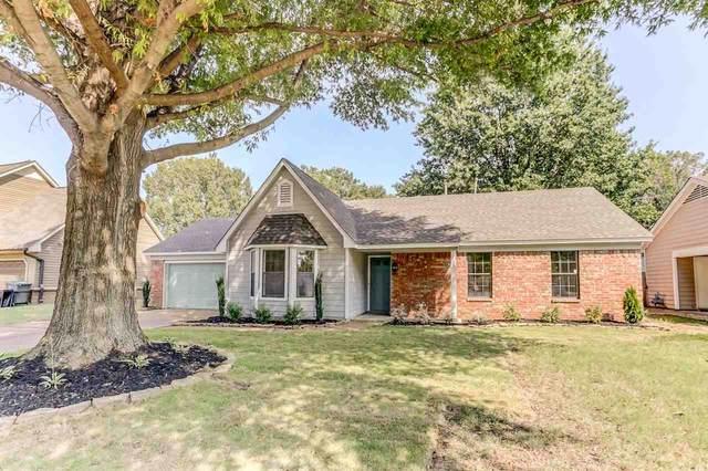 2546 Sage Meadow Dr, Memphis, TN 38133 (MLS #10109144) :: Area C. Mays | KAIZEN Realty