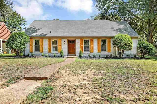 1592 W Crestwood Dr, Memphis, TN 38119 (#10109245) :: J Hunter Realty