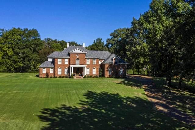 6036 Willoughby Oak Ln, Bartlett, TN 38135 (#10109268) :: The Home Gurus, Keller Williams Realty