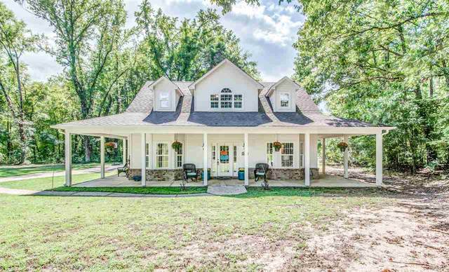 10389 Shelby Acres Cv, Unincorporated, TN 38002 (MLS #10109275) :: Your New Home Key