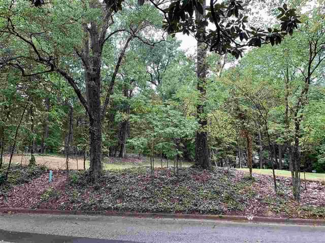 5845 Haymarket Rd, Memphis, TN 38120 (MLS #10109324) :: Your New Home Key