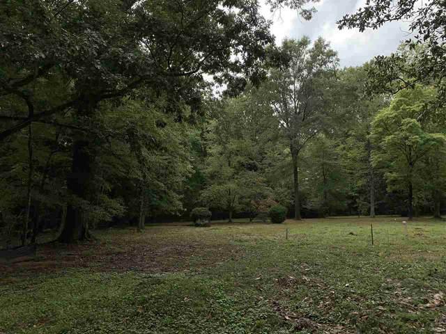 541 Haymarket Cv, Memphis, TN 38120 (MLS #10109326) :: Your New Home Key