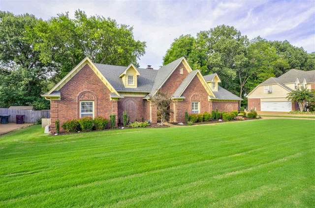 276 Morton Rd, Collierville, TN 38017 (MLS #10109448) :: Your New Home Key
