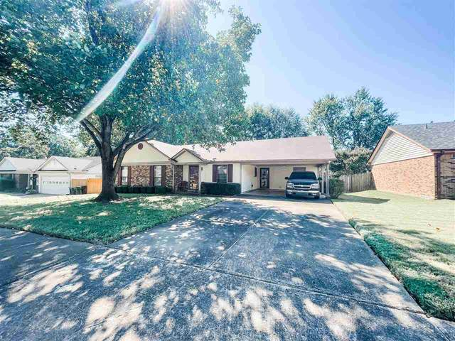 6387 Briergate Dr, Bartlett, TN 38134 (MLS #10109524) :: Your New Home Key