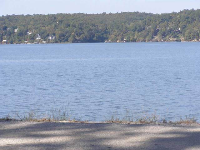 LOT 24 Riviera Dr, Pickwick Lake, AL 35616 (#10109573) :: The Melissa Thompson Team