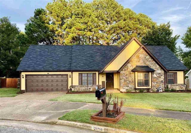 7120 Shadow Oaks Dr, Memphis, TN 38125 (MLS #10109583) :: Your New Home Key