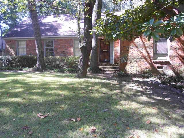 393 Elwood Ln, Memphis, TN 38117 (MLS #10109597) :: Your New Home Key