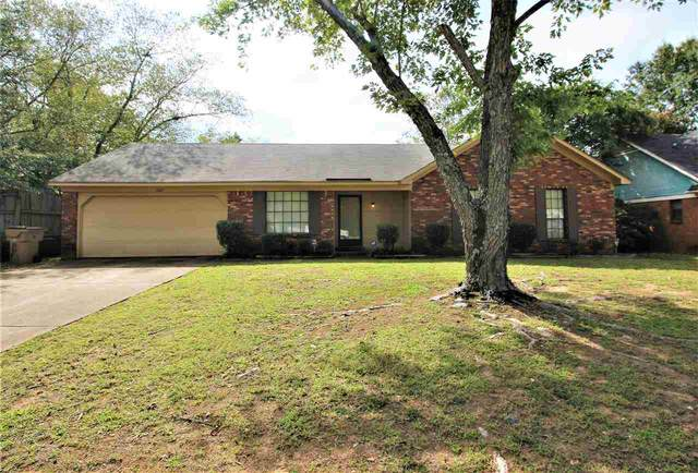 6621 Lake Valley Dr, Memphis, TN 38141 (MLS #10109637) :: Your New Home Key