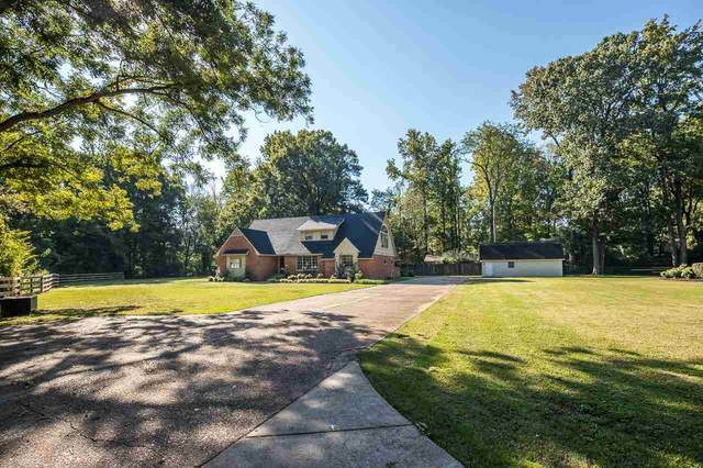 2 Remily Pl, Brownsville, TN 38012 (#10109699) :: RE/MAX Real Estate Experts