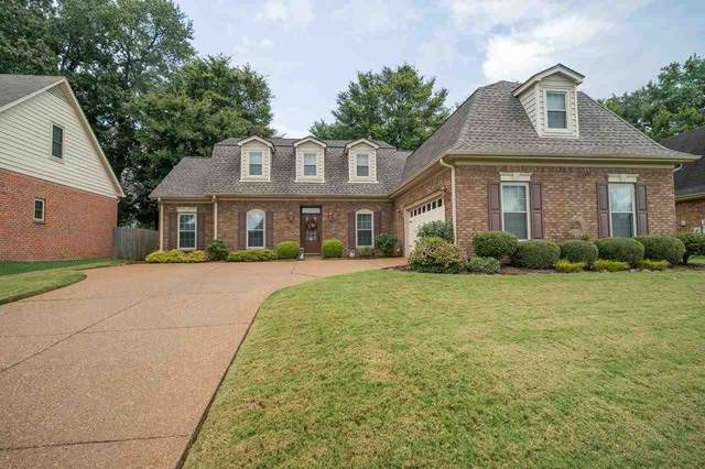 3148 Hill Lake Dr, Bartlett, TN 38135 (MLS #10109752) :: Your New Home Key
