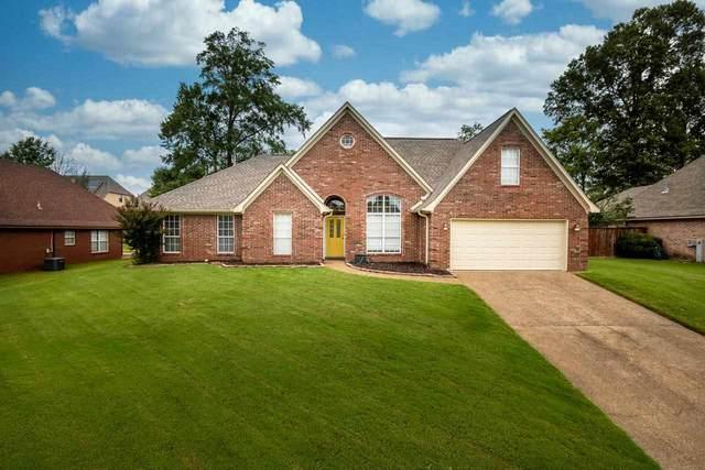 7702 Shadow View Cv, Bartlett, TN 38002 (MLS #10109763) :: Your New Home Key