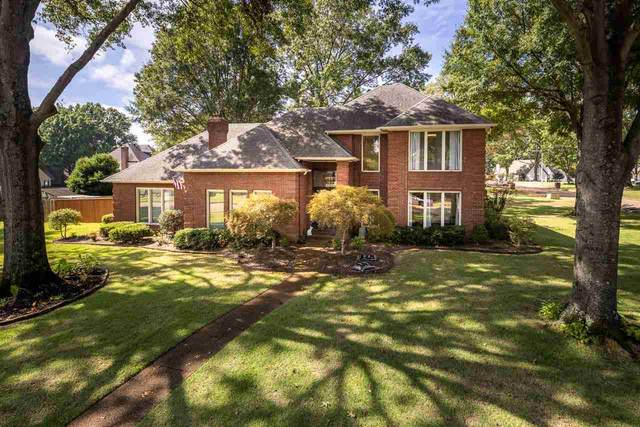 3505 Beaver Run Dr, Collierville, TN 38017 (#10109768) :: RE/MAX Real Estate Experts