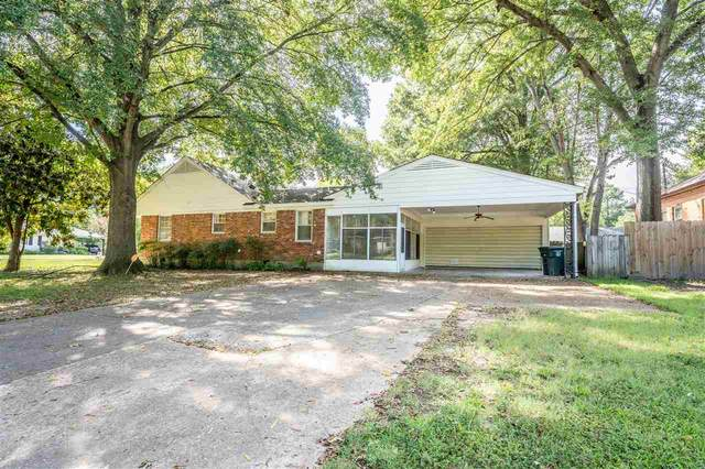 5264 Sequoia Dr, Memphis, TN 38120 (#10109904) :: All Stars Realty