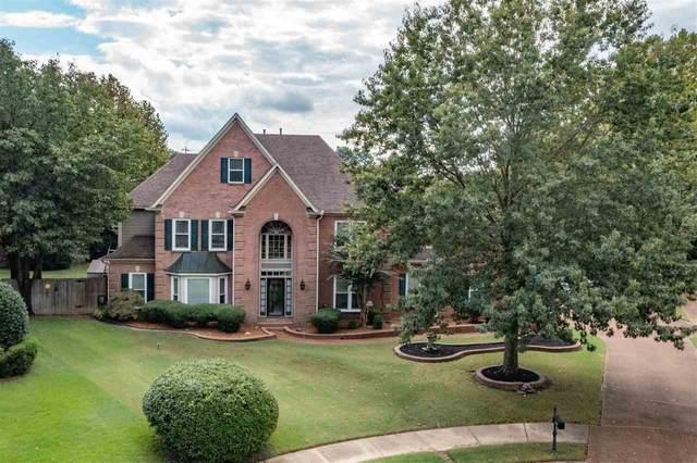 560 Roehampton Cv, Collierville, TN 38017 (MLS #10109922) :: Your New Home Key
