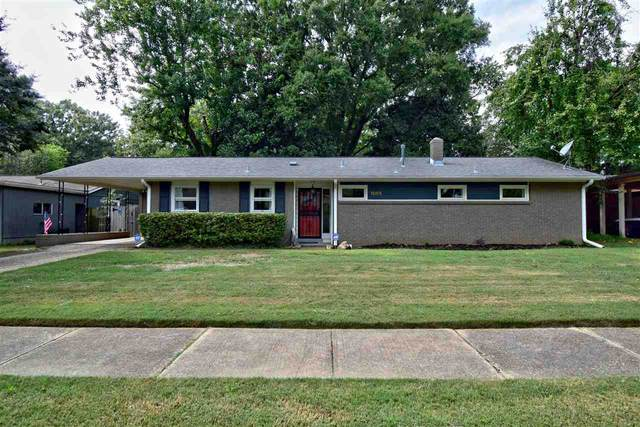 1065 Ivy Dr, Memphis, TN 38117 (MLS #10110015) :: Your New Home Key