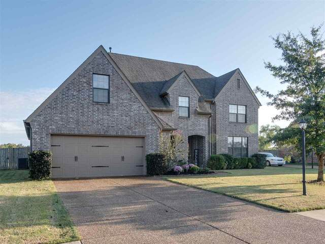 13467 Lapstone Ln, Olive Branch, MS 38654 (#10110099) :: RE/MAX Real Estate Experts