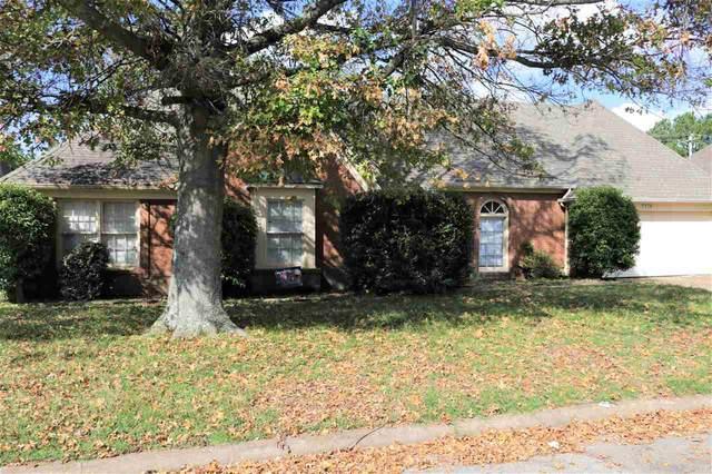 8176 N Creekside Cir N, Memphis, TN 38016 (#10110169) :: RE/MAX Real Estate Experts