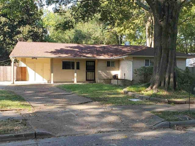 449 Green Acres Rd, Memphis, TN 38117 (MLS #10110190) :: Bryan Realty Group