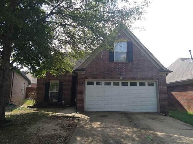 1961 Auburn Tree Cv, Memphis, TN 38134 (MLS #10110227) :: Your New Home Key