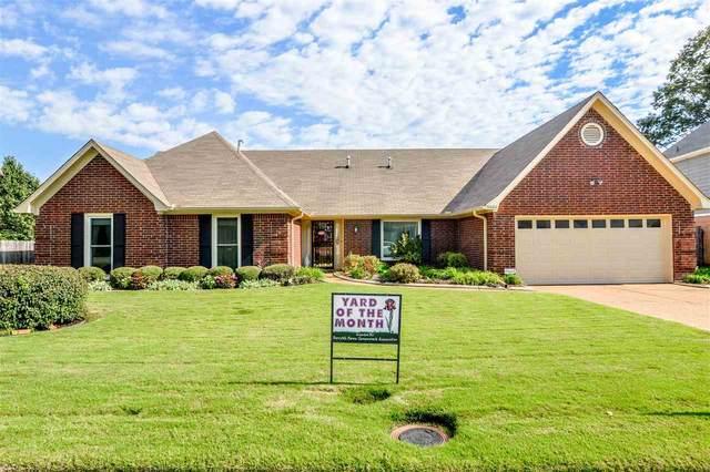 8886 Gooseberry Cv, Memphis, TN 38016 (MLS #10110254) :: Your New Home Key