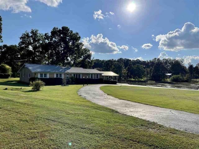 250 Calvary Ln, Savannah, TN 38372 (MLS #10110315) :: Gowen Property Group | Keller Williams Realty