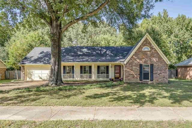 6668 Amersham Dr, Memphis, TN 38119 (MLS #10110329) :: Your New Home Key