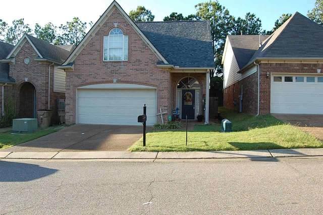 10000 Misty Elm Dr, Memphis, TN 38016 (#10110524) :: The Home Gurus, Keller Williams Realty