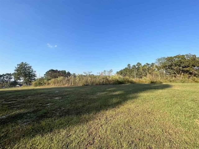 00 Sylvan Dr, Savannah, TN 38372 (MLS #10110585) :: Gowen Property Group | Keller Williams Realty