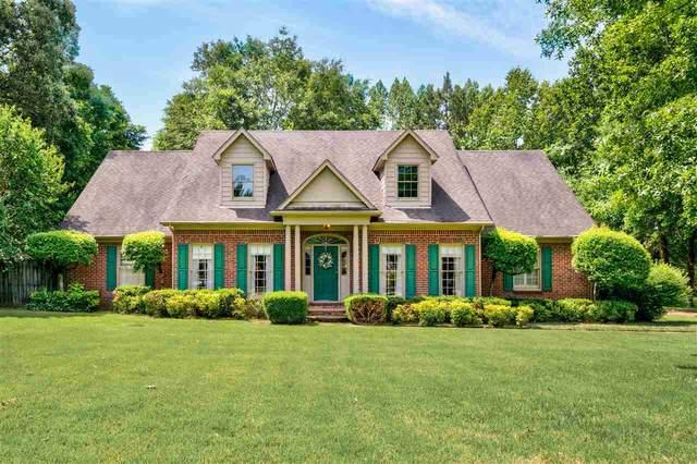 9771 Woodland View Ln, Cordova, TN 38018 (MLS #10110623) :: Your New Home Key