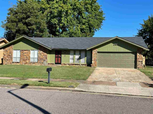 6140 Pebble Beach Ave, Memphis, TN 38115 (#10110813) :: RE/MAX Real Estate Experts