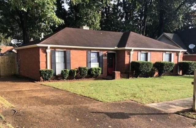 6538 Gadwall Dr, Memphis, TN 38141 (#10110886) :: The Melissa Thompson Team