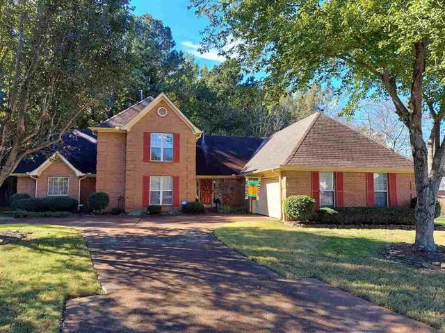 255 Green Pine Cv, Memphis, TN 38018 (MLS #10110905) :: Your New Home Key