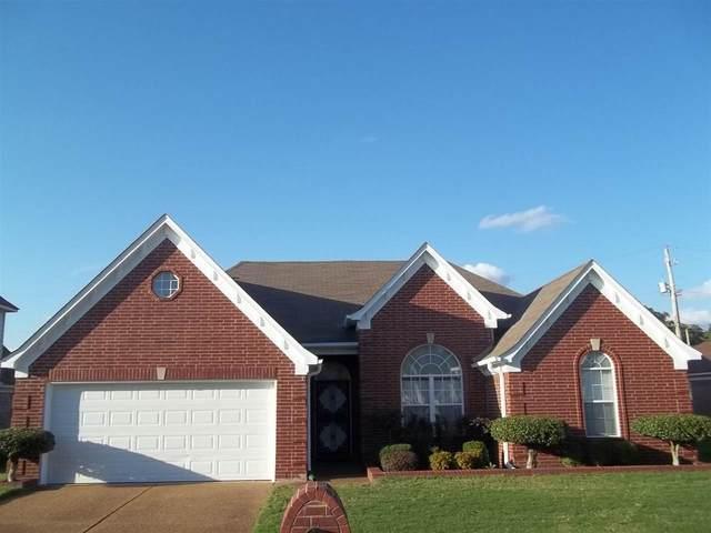 808 Painted Oak Dr, Memphis, TN 38116 (MLS #10111501) :: Area C. Mays | KAIZEN Realty