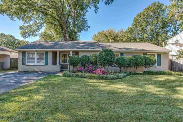 1269 W Perkins Rd, Memphis, TN 38117 (#10111599) :: The Home Gurus, Keller Williams Realty