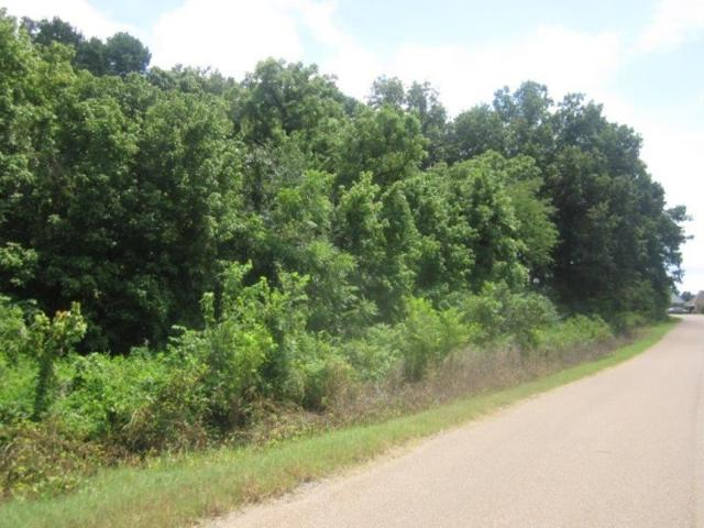 LOT 10 Hannah Marie Dr, Munford, TN 38058 (#9958420) :: The Wallace Team - RE/MAX On Point