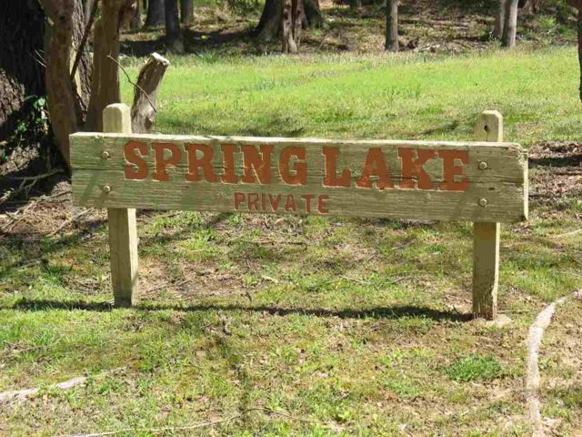 5749 Spring Lake Rd, Unincorporated, TN 38135 (#9974253) :: The Wallace Team - RE/MAX On Point